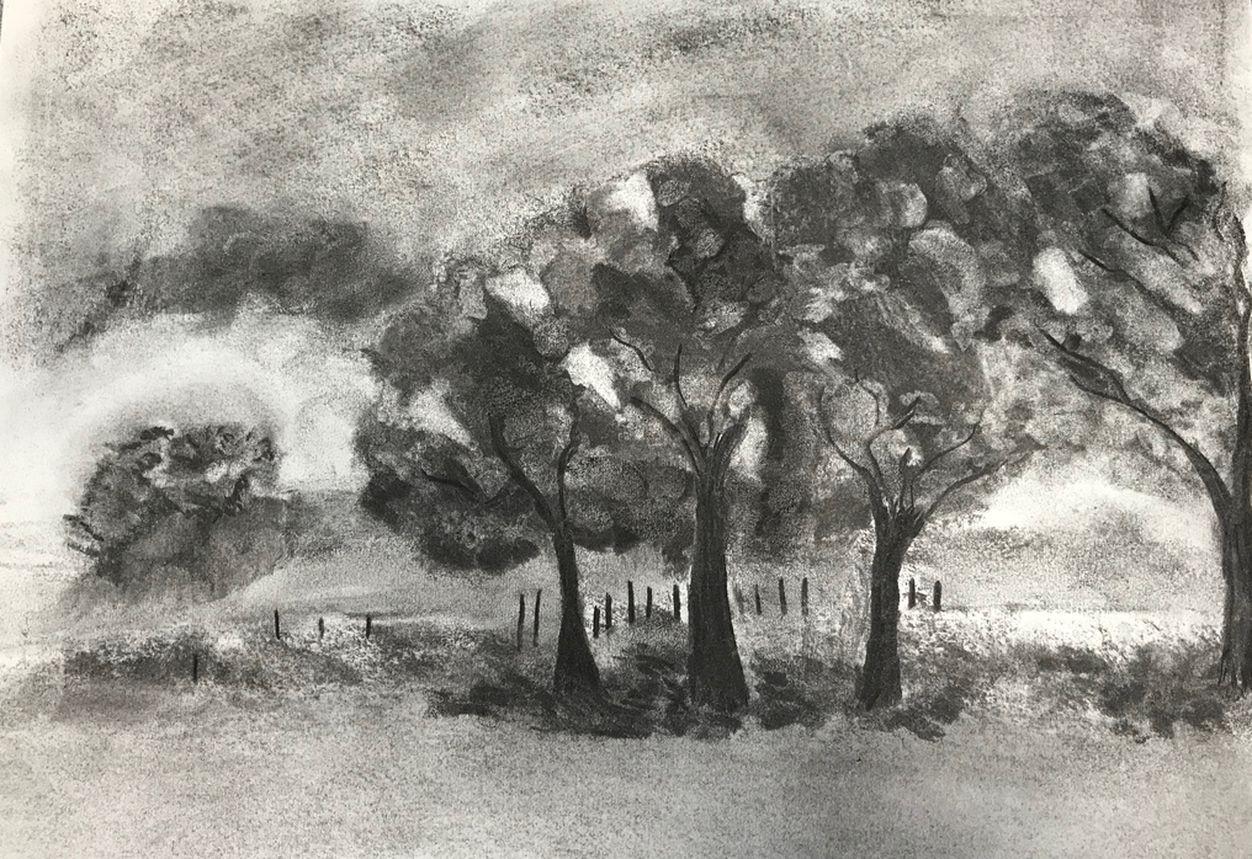 Franc oise arbres fusain 02 2020