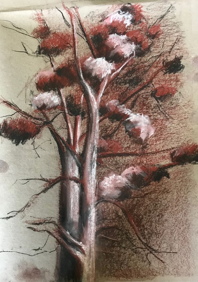 Nicole arbre pastel sec 01-2020