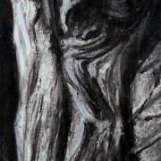 Nicole arbres 3 fusain 03 2020