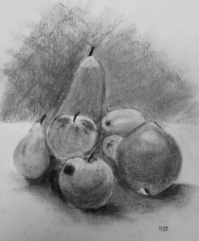 Rose-Marie fruits fusain 01-10-2016